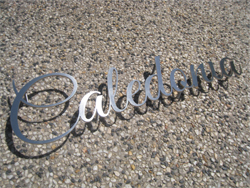 Lasercut Stainless Running Letters with Pins